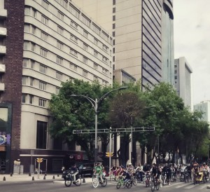 Biking Reforma on Sunday afternoon