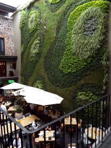 Downtown Hotel Green wall